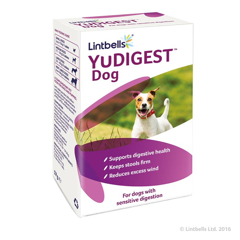 YuDIGEST_Dog_780x780